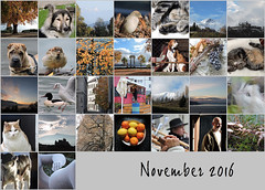 November 2016 mosaic (keepps) Tags: mosaic bighugelabs