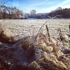 Wintermorgen (nehad1) Tags: nature winter fields felder wiesen landschaft landscape