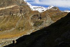 Val d'Aosta - Valsavarenche: vallone di Levionaz, salendo a Levionaz Dessus (mariagraziaschiapparelli) Tags: allegrisinasceosidiventa levionaz vallonedilevionaz pngp parconazionaledelgranparadiso valdaosta valsavarenche autunno camminata escursionismo montagna mountain