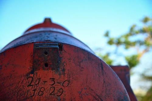 Canon à Fort Fincastle