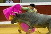 DSC_9624.jpg (josi unanue) Tags: animal blood spain bull arena bullfighter sansebastian esp toro traje asta sangre espada bullring unanue guipuzcoa matador torero tauromaquia sufrimiento cuerno ureña banderilla banderilero