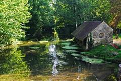 Vieux lavoir au bord de la Juine à MEREVILLE (ESSONNE ). (jmsatto) Tags: nature rivière patrimoine lavoir essonne juine méréville