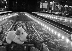 Retro Arcade (cameronhansonphotography98) Tags: dog white black game lights teddy coins arcade prize dazzler