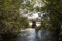 (Nowhere land) Tags: bridge naturaleza nature water ro river puente agua pasarela vegetation vegetacin waterscape hueco