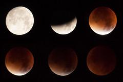 bloodmoon (zeyerdem) Tags: moon night eclipse nikon kiel supermoon