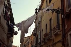 (Vittoria Lazzeri) Tags: street venice art wet modern strada arte contemporary dry biennale venezia moderna scorcio contemporanea panni stesi