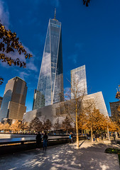 Resilience - 9.11 Memorial, 9.11 Museum, One World Trade Center (The Freedom Tower) (nianci pan) Tags: nyc newyorkcity blue trees urban color skyline museum architecture skyscraper buildings cityscape manhattan pan  911memorial highrisebuilding   sonyalphadslr nianci oneworldtradecenter lowmanhattan 911museum