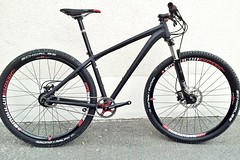 Niner ONE 9 Hydroform Alloy Elite Rohloff Bike by RevolutionSports.eu for Dream-Bikes.com