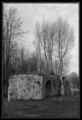 Vestiges du moulin de Douvres - Torcy (DavidB1977) Tags: bw france nikon nb iledefrance marne seineetmarne torcy d7100