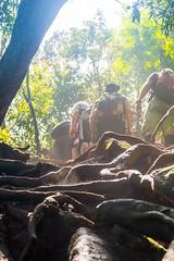DSC_6028 (sergeysemendyaev) Tags: 2016 rio riodejaneiro brazil pedradagavea    hiking adventure best    travel nature   landscape scenery rock mountain    high ascend  carrasqueira risk