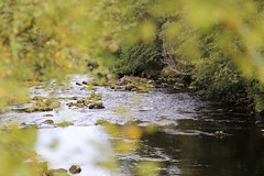 Scottish nature (Toftus Photography) Tags: scotland landskap landscape nature beauty beautiful autumn skotland greatbritian outdoor colors