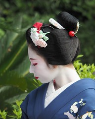 Maiko20161016_12_03 (kyoto flower) Tags: eiunin temple toshimomo kyoto maiko 20161016     hirokunidoi