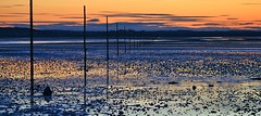 Evening Light Across Lindisfarne By Angela Wilson (angelawilson2222) Tags: landscape seascape waterscape sunset evening dusk orange blue light dof wild nature scenary view pligrims way holy island lindisfarne northumberland pilgrimage reflections nikon angela wilson