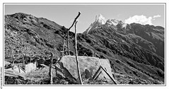 Machhapuchhre  (6 993m) (L'Abominable Homme de Rires) Tags: machhapuchhre npal landscape trek atalante nb noiretblanc blackwhite montagne montain annapurna