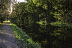 Early morning canal walk (Alex TFL) Tags: autumn canal morning nature trees leaves sonya6000 sigma3028 countryside water rufford lancashire