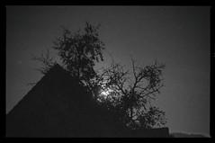 Haus-Baum-Mond (shortscale) Tags: nacht mondschein mond vollmond haus dach baum smcpentaxm11750mm