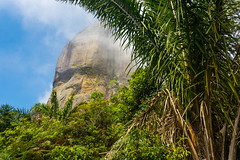 DSC_6004 (sergeysemendyaev) Tags: 2016 rio riodejaneiro brazil pedradagavea    hiking adventure best    travel nature   landscape scenery rock mountain    high  forest jungle trees green