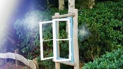 Open Window (AstridSusann) Tags: windows open fenster outdoor hecke germany emsland antik oktober2016 autumn fences