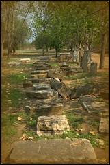 El pasado (jose luis naussa ( + 2 millones . )) Tags:   grecia  arqueologa macedoniagreece makedonia timeless macedonian  saariysqualitypictures