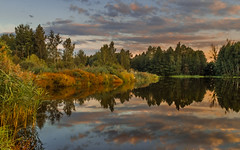 Hidden cove (piotrekfil) Tags: nature landscape waterscape water sunset sky clouds lake reflections riverbank riverside autumn pentax poland piotrfil