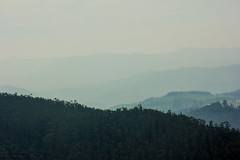 Untitled (vpraveenkumarvpk) Tags: mist fog ooty canon 60d 24105 canonusa pk