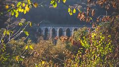Rando de l'aqueduc  Mouron/Yonne (Gregou22) Tags: campagnefranaise morvan automne aqueduc