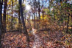DSC09094-96_HDR (Capt Kodak) Tags: autumn chattahoocheerivernationalrecreationarea fall hdrefexpro2 madefrom3images medlockbridgepark nationalparkservice nikcollectionbygoogle niksoftware photomerge