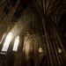 Lichtorgel im Wiener Stephansdom