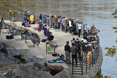 Conowingo & Lancaster 013ps (dena429) Tags: conowingo dam conowingodam photographers telephoto camera birding group crowd working atwork eagle baldeagle photography waterfront susquehanna river chesapeakebay maryland harfordcounty harford recreation leisure park people tripods exelon hydroelectric hydroelectricdam observationdeck fishwharf