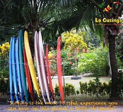 #surfing #costarica is #puravida -- #wellness #ocean #waves LaCusinga.com