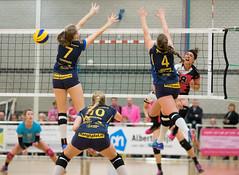 2B122134 (roel.ubels) Tags: flamingos 56 gennep pica mare peelpush volleybal volleyball eredivisie sport topsport 2016