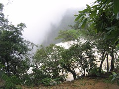 World Famous Jog Falls Photography By CHINMAYA M.RAO Set-1 (61)
