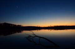 DSC_0129 (florian.glechner) Tags: landschaft landscape traun traunauen spiegelung wassser sonnenuntergang sonne baum dmmerung himmel wasser kste outdoor dawn dusk sunset sun reflections water lake tree
