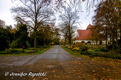 Aussicht auf die Kapelle (Bernsteindrache7) Tags: autumn tree sky flora fauna garden dsseldorf heaven himmel germany nrw city kirche landscape panasonic lumix park