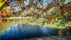 Town Creek park pond (hz536n/George Thomas) Tags: canon5d towncreek 2016 alabama auburn cs5 ef1740mmf4lusm fall nik copyright pond hdr water trees shade