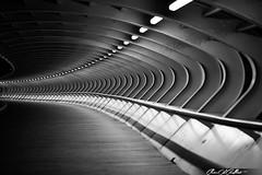 Shadows (Clear Of Conflict) Tags: night noche bridge puente lights barakaldo euskadi kaiku bizkaia pais vasco euskal herria lines lineas canon 85mm f18 black white monochrome blanco negro shadows sombras arquitectura