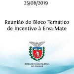 Reunião do Bloco Temático de Incentivo à Erva-Mate 25/06/2019