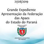 Grande Expediente - Apresentação da Federação das Apaes, com vice-presidente Pedro Paulo Bazana.
